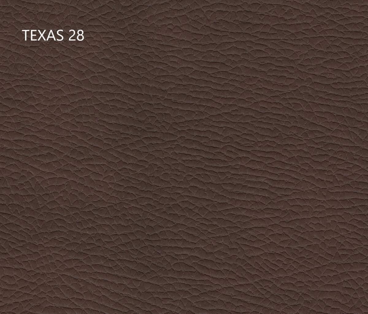 texas-28